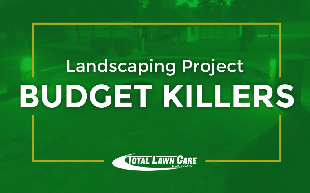 Landscaping Project Budget Killers