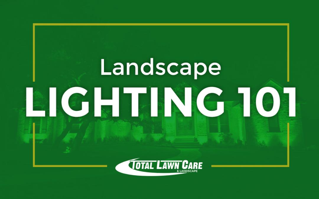 Landscape Lighting 101