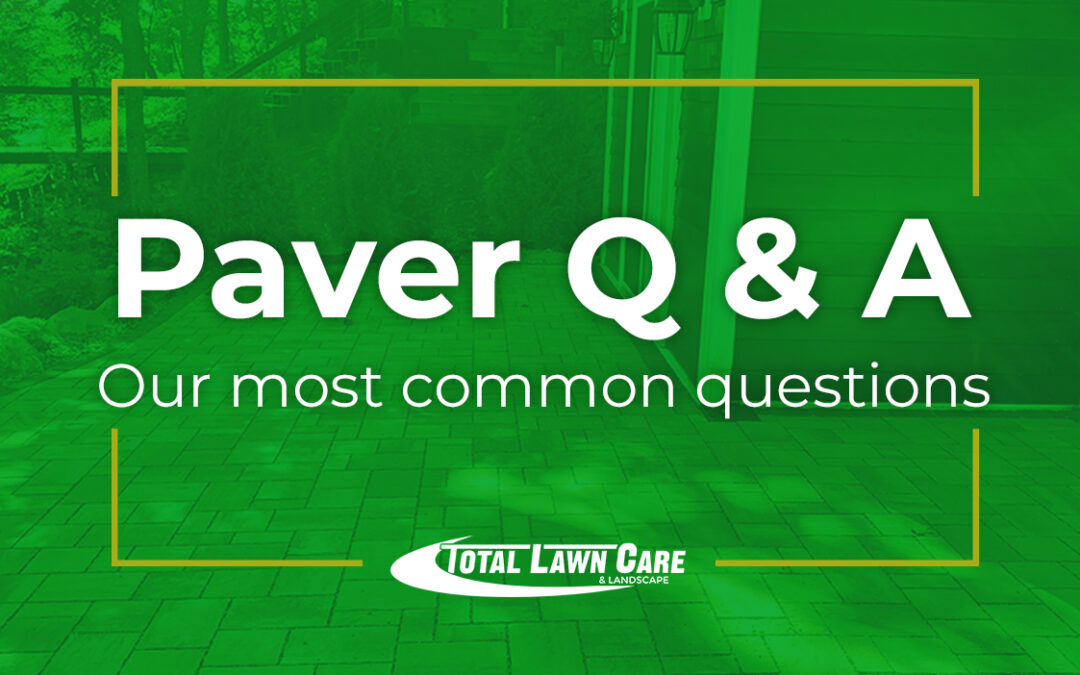 Your Questions About Paver Installation